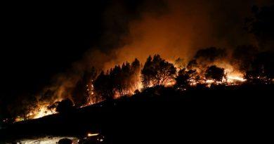 Пострадавшие от пожаров города США получают Интернет от SpaceX
